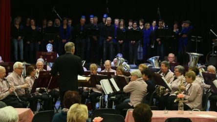 Seniorenorkest 6 3 2016 021